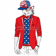 Pitbull hipster in a jacket and sunglasses . Vector illustration. The print on the cover , clothing or card .