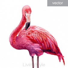 Colorful pink flamingo 96395795