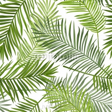 Seamless Tropical Palm Leaves Background - for design, scrapbook 103870992