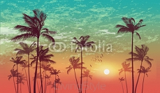 Exotic tropical palm tree landscape   at sunset or moonlight,  with cloudy sky. Highly detailed  and editable 110993912