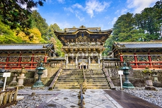 Toshogu Shrine 85320924