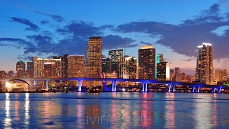 Miami night scene 42447150