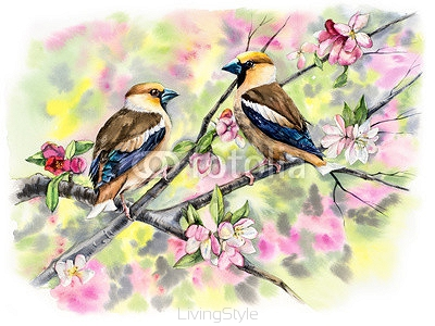 Grosbeaks on a branch with flowers. Decoration with wildlife scene. Pattern with two birds. Watercolor hand drawn illustration 103413640