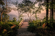 Mountain with tree bridge view point at sunrise in national park, thongphaphum, kanchanaburi, thailand 118314628