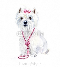 West Highland Terrier. Portrait small dog. Watercolor hand drawn illustration 104913057