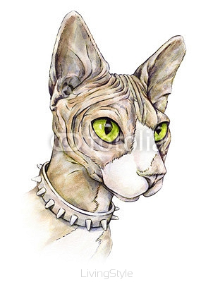 Canadian sphinx in a collar with thorns. Naked cat on a white background. Watercolor drawing 102767700