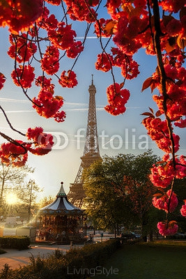 Eiffel Tower with spring tree in Paris, France 104412068