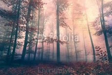 Grunge beautiful red colored foggy forest landscape background. Grunge filter effect used. 92036260