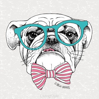 Image the portrait of a bulldog with a bow and in the glasses. Vector illustration. 114365285