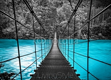suspension bridge 67056496