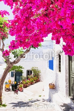 Traditional greek street with flowers in Amorgos island, Greece 116139821