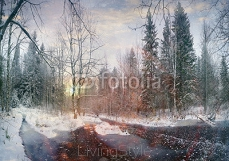 winter landscape frozen creek in the forest 103888133