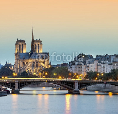 church Notre Dame de paris at night, Paris, France 119680839