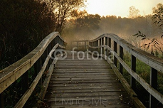 Wooden Foot Bridge in the Early Morning 116573556