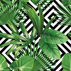 tropical palm leaves pattern, geometric background 83346091