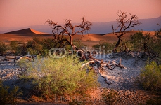 Sand Dunes And Mountains in sunset, Death Valley National Park, California, USA 87318558