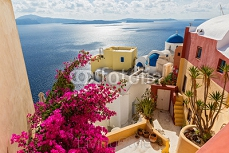 Architecture in island Santorini 126838752